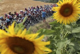 Dve osobe bez optužbi u istrazi za doping na Tur d'Fransu